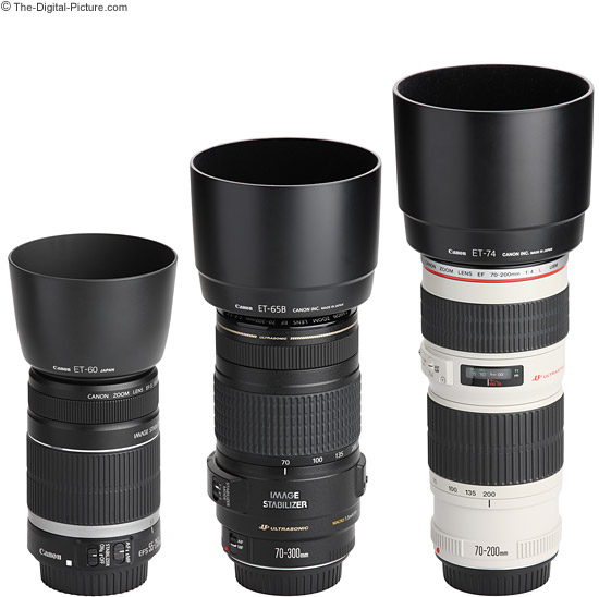 Canon EF 70-300mm f/4-5.6 IS USM Lens Compared to Similar Telephoto Zoom Lenses - Hoods Attached