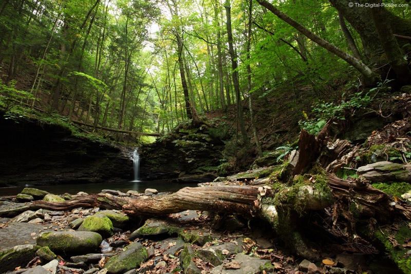 deep woods waterfall worlds end state park