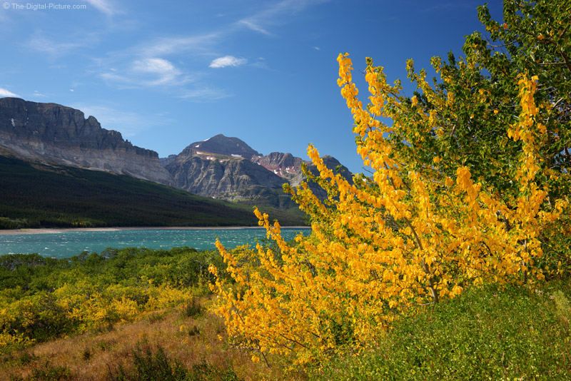 Fall Color At Lake Sherburne Glacier National Park