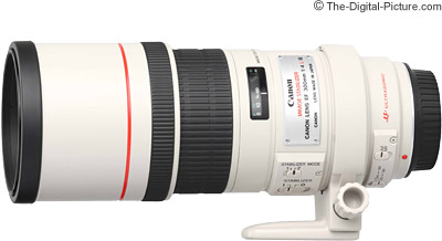 canon ef 300mm f/4l is usm lens review