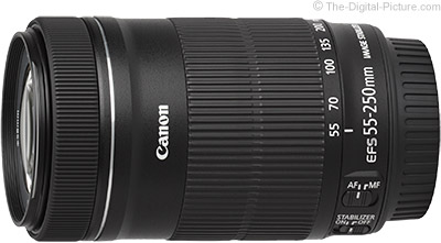 Canon EF-S 55-250mm f/4-5 6 IS STM Lens Review
