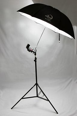 Harsh Light Photography